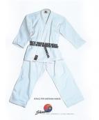 Shintai Kampfsportschule